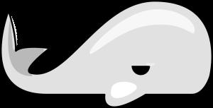 whale-311847_1280